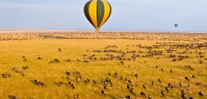 Balloon Safaris in Masai Mara