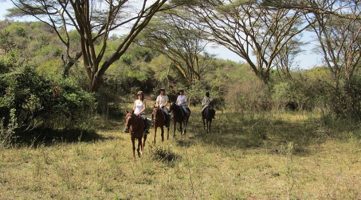 Horseback Safaris in Masai Mara