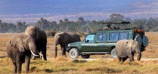 4 days Budget Maasai Mara safari