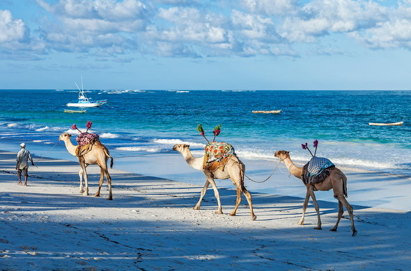 Coastal Kenya