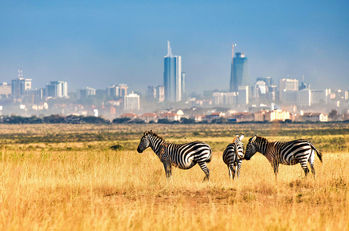 The Best Time to Visit Nairobi City