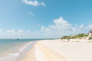 Diani beach mural image