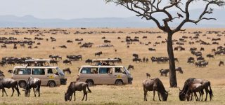 What is Maasai Mara famous for?