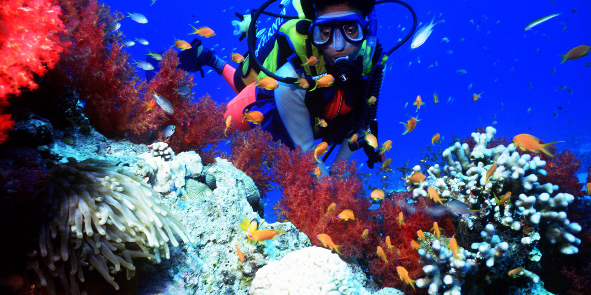 A traveler engages in an Aquatic tour in the Mombasa Marine Park