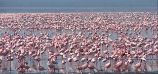 Beyond Masai Mara National Reserve