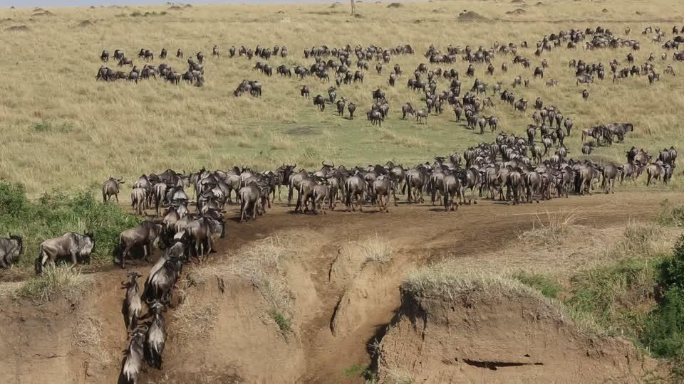 Location of Masai Mara