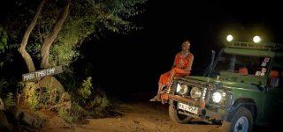 Night Game Drives in Masai Mara