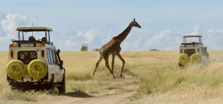 How to avoid crowds at Masai Mara national reserve
