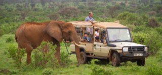 3 Days Samburu Camping Safari