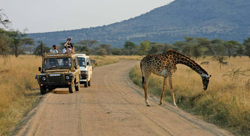 7 Days Tanzania Classic Safari