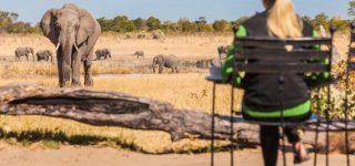 6 Days Tanzania Kenya Wildlife safari