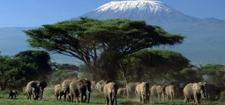 6 Reasons to visit Amboseli national park