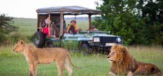 Top 7 five safari activities to do on a Kenya safari