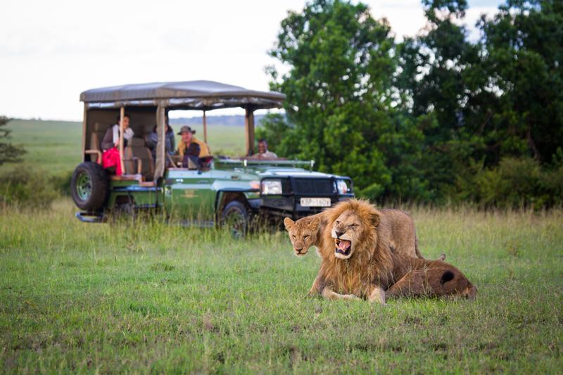 Game viewing safaris