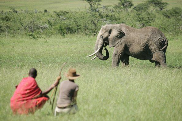 Naboisho Mara Conservancy